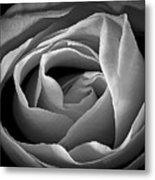 Red Rose In Infrared Metal Print