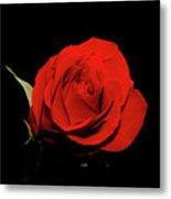 Red Rose On Black 2 Metal Print