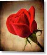 Red Rose Romance Metal Print