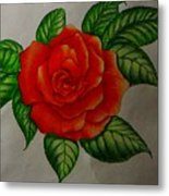 Red Rose Metal Print by Ron Sylvia