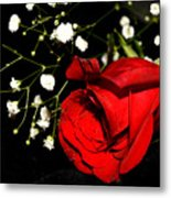 Red Rose With Baby Breath Metal Print