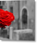 Red Rose with Black and White Background Metal Print