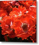 Red Roses Botanical Landscape 1 Red Rose Giclee Prints Baslee Troutman Metal Print