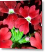 Red Sea Metal Print