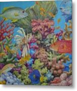 Red Sea Reef Metal Print