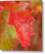Red Silk Metal Print