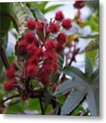 Red Spikes Metal Print