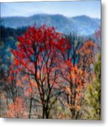 Red Spring Metal Print by Irene Abdou