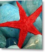 Red Starfish Metal Print