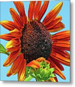 Red Sunflowers-adult And Child Metal Print