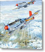 Red Tail 61 Metal Print by Charles Taylor