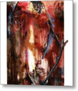 Red Tail Metal Print