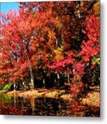 Red Trees By Lake Metal Print