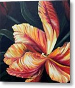Red Tulip Blossom Metal Print
