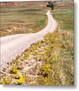 Red Valley Road Metal Print
