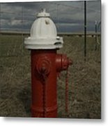 Red  White Hydrant Metal Print