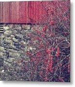 Red Winter Metal Print