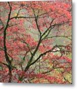Red Zen Metal Print