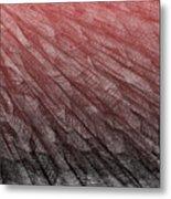 Red.385 Metal Print