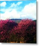 Redbud In The Blue Ridge Metal Print