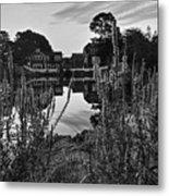 Redd's Pond Lupines Sunrise Black And White Metal Print