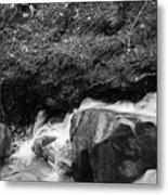 Redwood Rushing Stream 2  Metal Print
