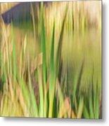 Reed Abstract II Metal Print