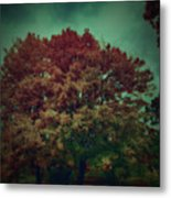 Reed Tree Metal Print