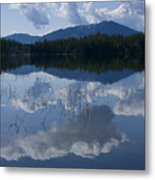 Reeds And Reflection Metal Print