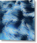 Reeds In Blue Metal Print
