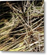 Reeds Reflected Metal Print