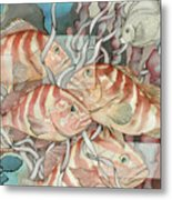 Reef Story Metal Print