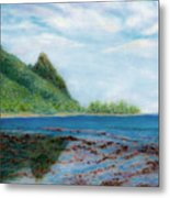 Reef Walk Metal Print