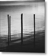 Reflect Metal Print by Amber Dopita