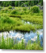 Reflected Clouds In Grass Metal Print