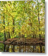 Reflected Color Of Autumn Metal Print
