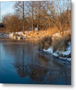 Reflecting In Threes - Three Trees By The Lake Metal Print