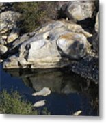 Reflecting Rock-sequoia National Park Metal Print