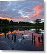 Reflecting The Day Metal Print