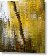 Fall Reflections 3 On Jamaica Pond Metal Print
