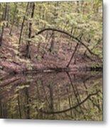 Ridge Run Reflection Metal Print