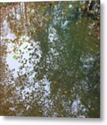 Reflection In Stream Metal Print