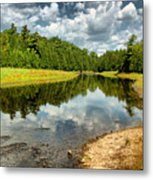 Reflection Of Nature Metal Print