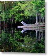 Reflection Off The Withlacoochee River Metal Print