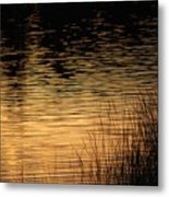 Reflection On A Sunset Metal Print