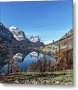 Reflection On St Mary Lake Through Burned Trees Metal Print