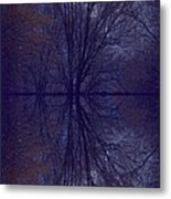 Reflection On Trees In The Dark Metal Print