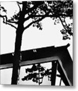 Reflection Study Metal Print