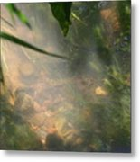 Reflections 3 Metal Print