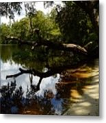 Reflections And Shadows Metal Print by Warren Thompson